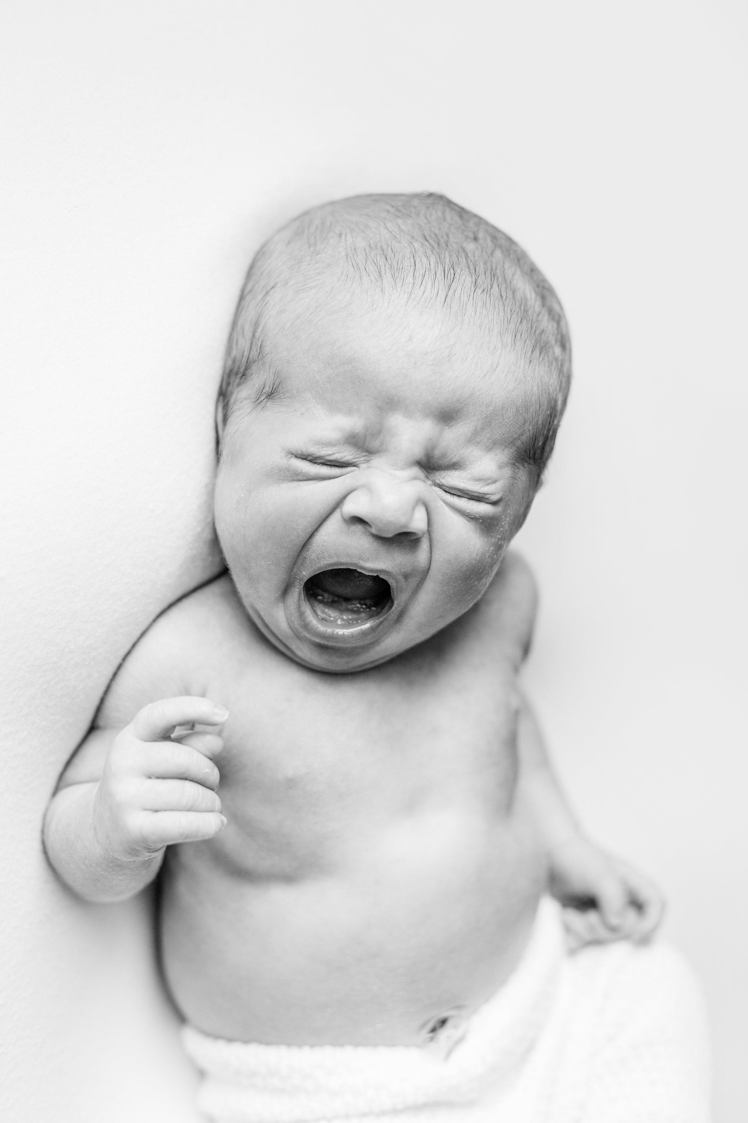 Top Newborn Photographer in Central Ohio