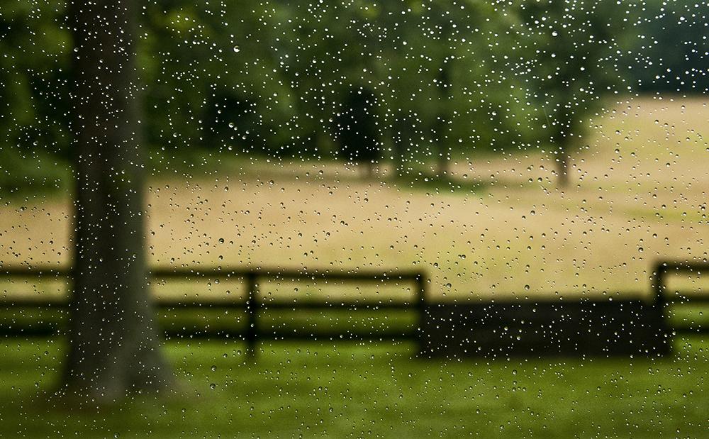 11_Starting to rain.jpg