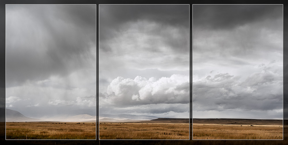 Tinged with Rain (diptych)