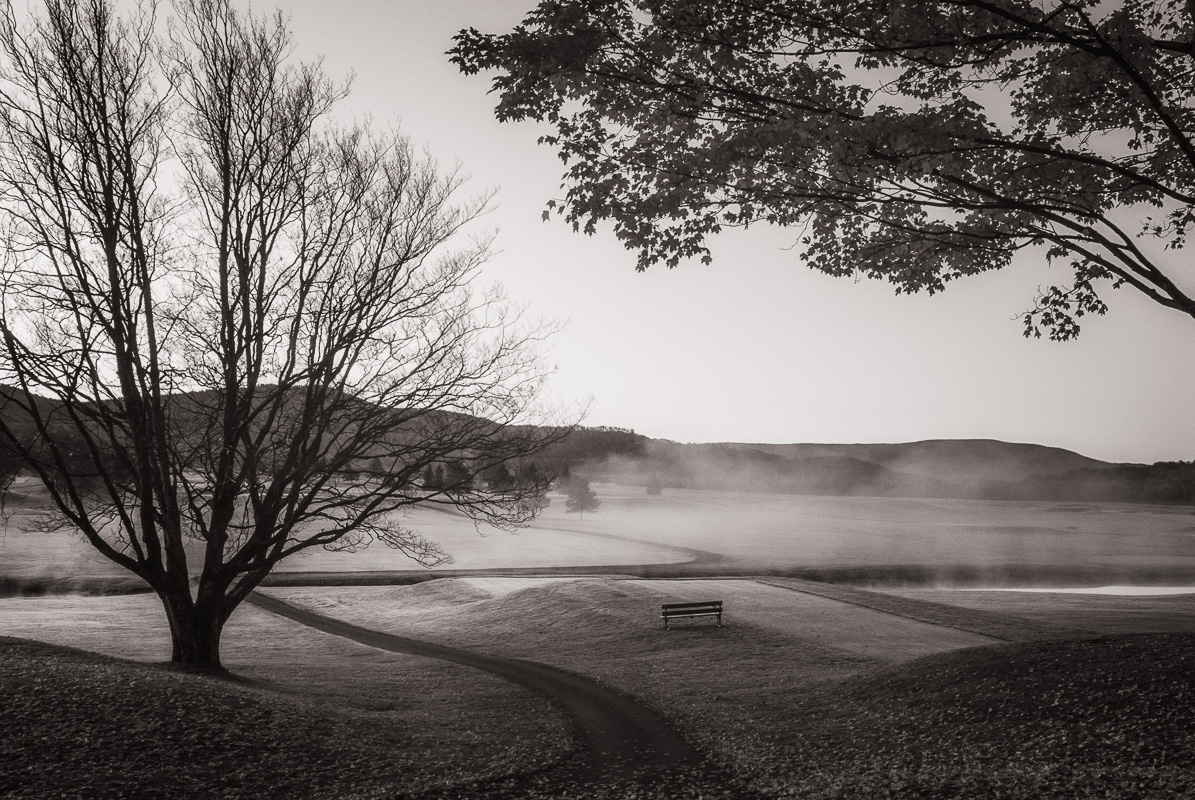 03-Bench in Fog