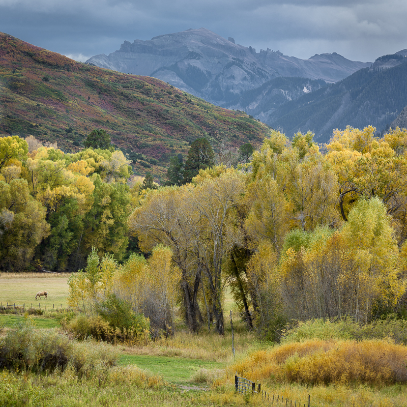 01-Fall Colorado Colors.jpg