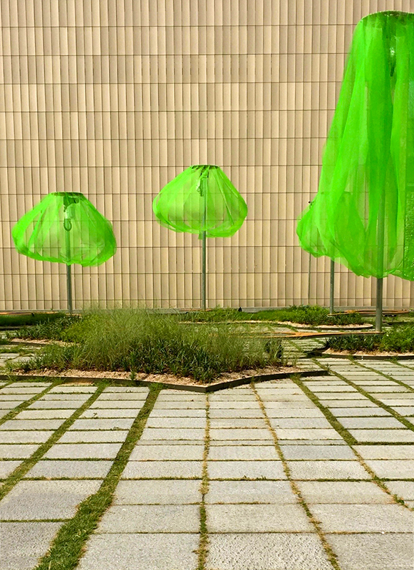 12-green umbrellas.jpg