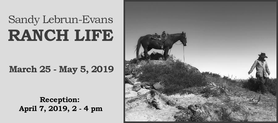slide for exhibit Lebrun Evans 2019.jpg