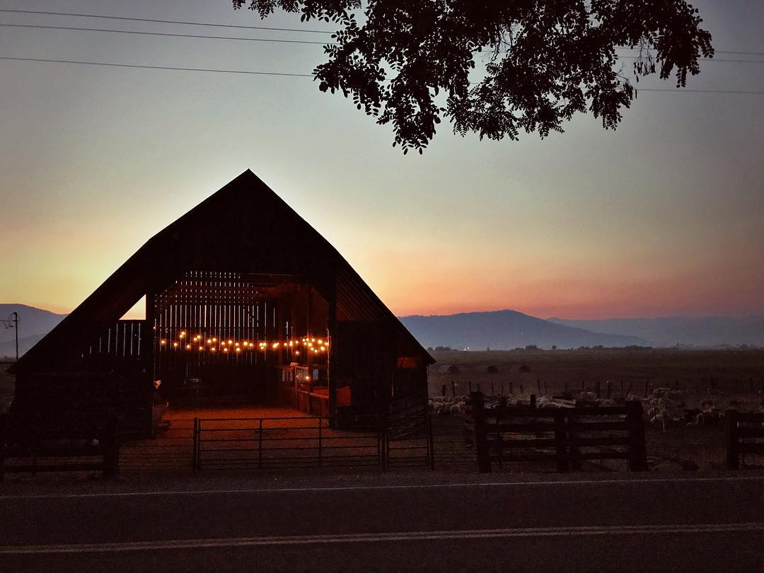 The barn at dusk last night. I love listening to the sounds of the ranch change from daytime  banter with chickens clucking and lambs baaing and birds chirping and cows belowing and the occasional car driving by - to the quiet of night when.jpg