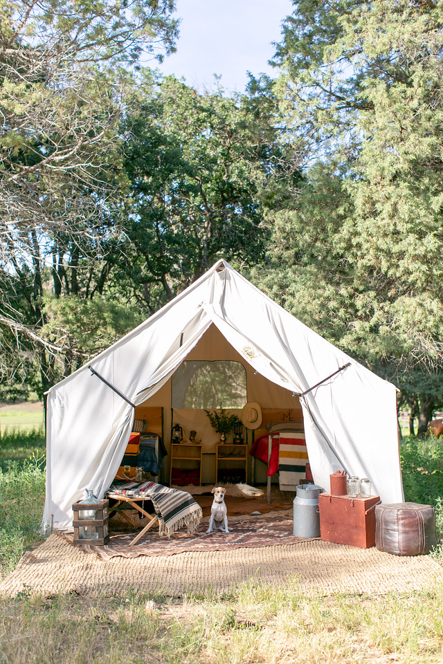 montana tent and dixie.jpg