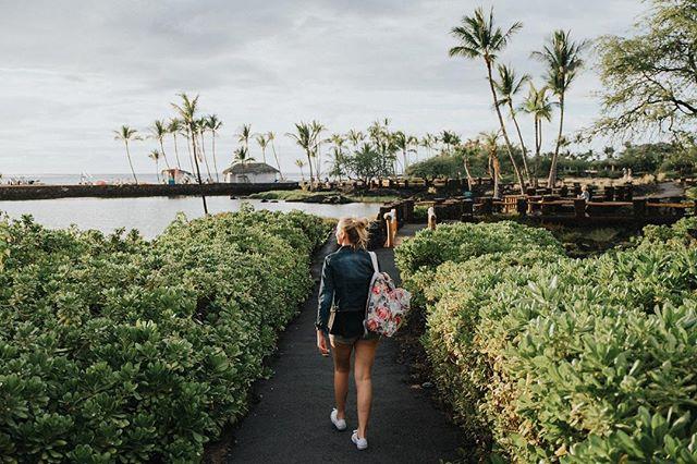 A stroll through paradise 🏝