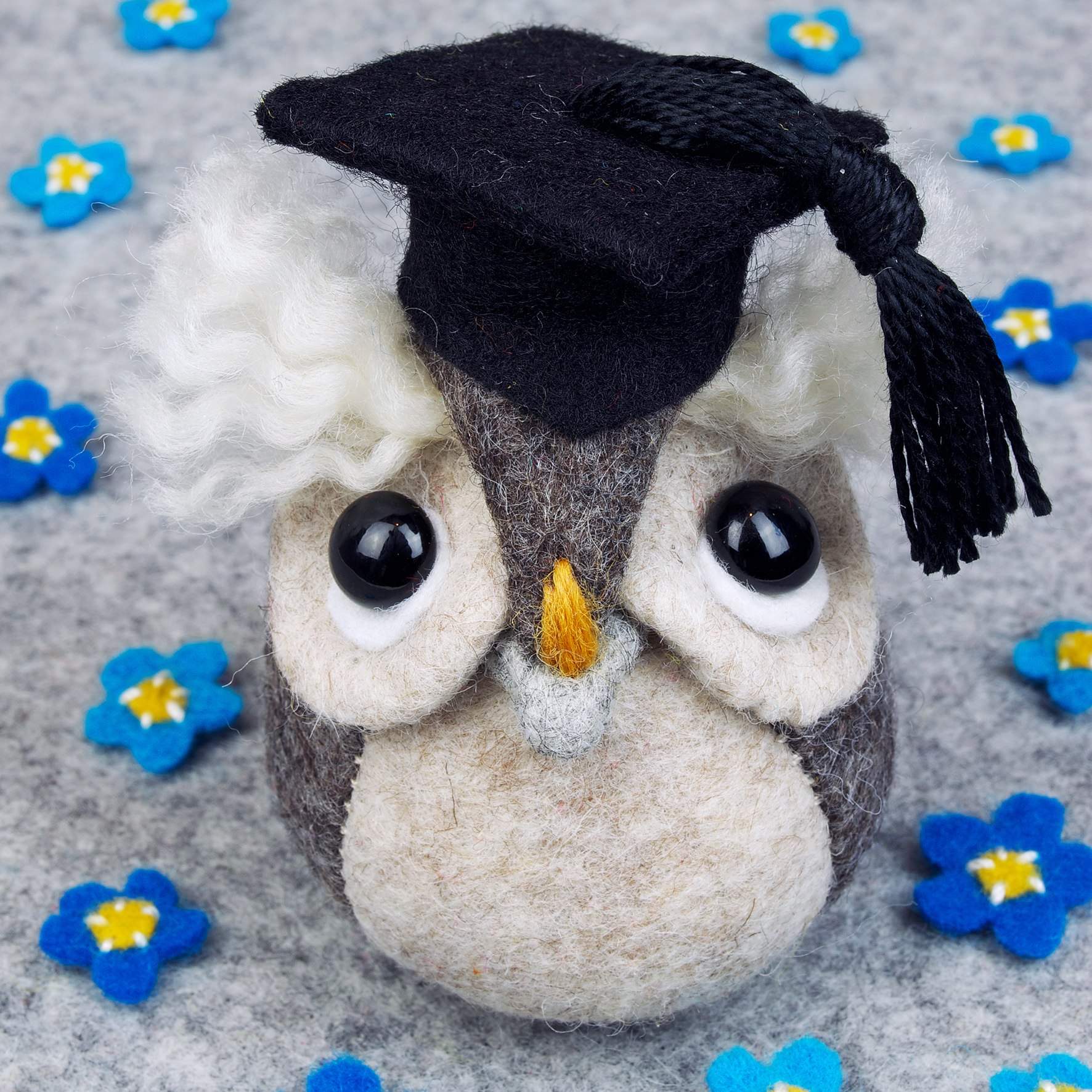 Graduation owl greeting card.