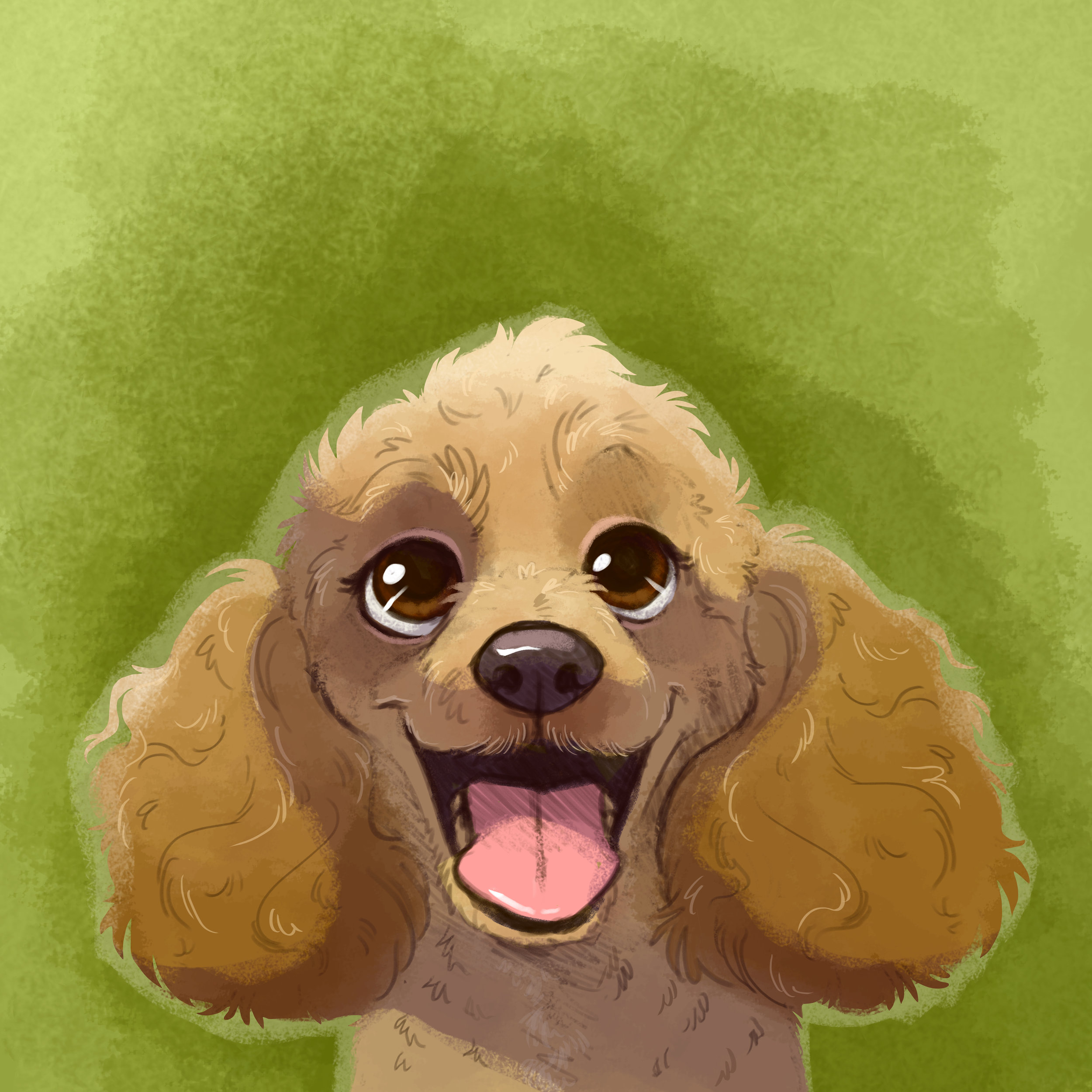 Dottie_IllustratedPortrait1.jpg