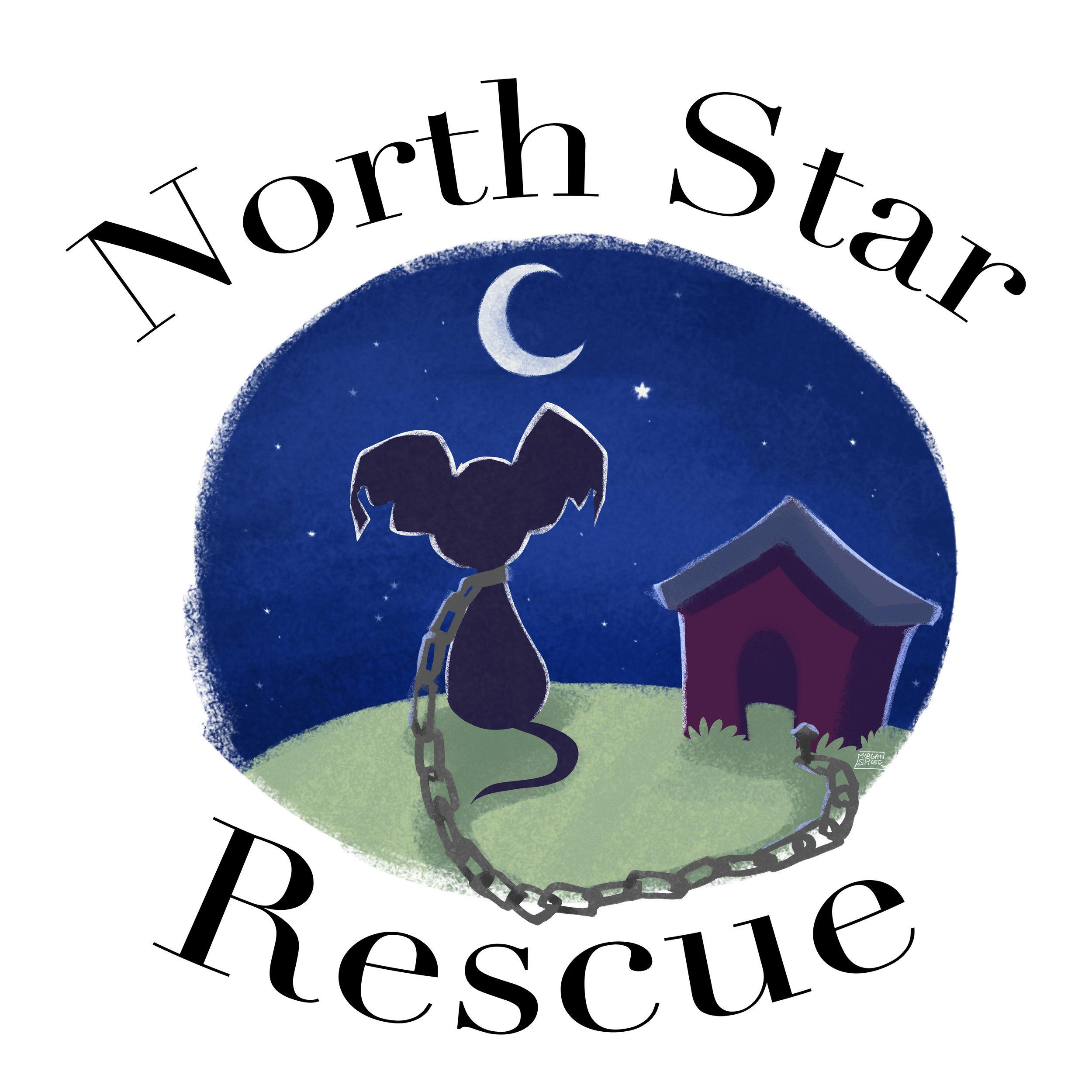 Blue_logo_NorthStar.jpg