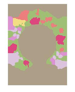 floret-300-246x300.png