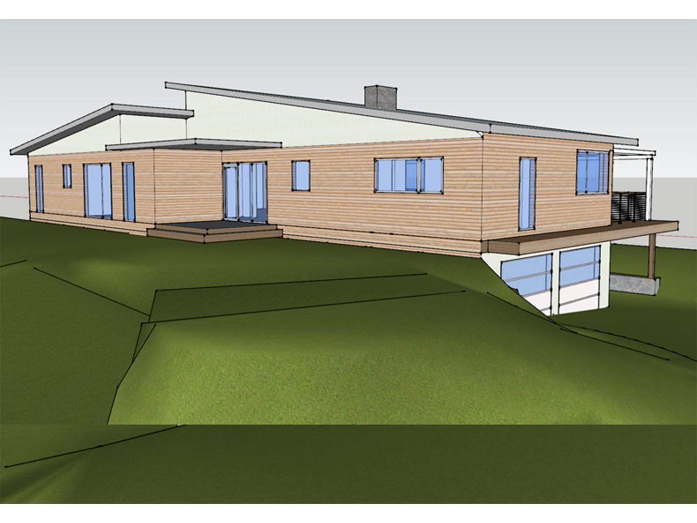 Contemporary Meadow In progress 2.jpg