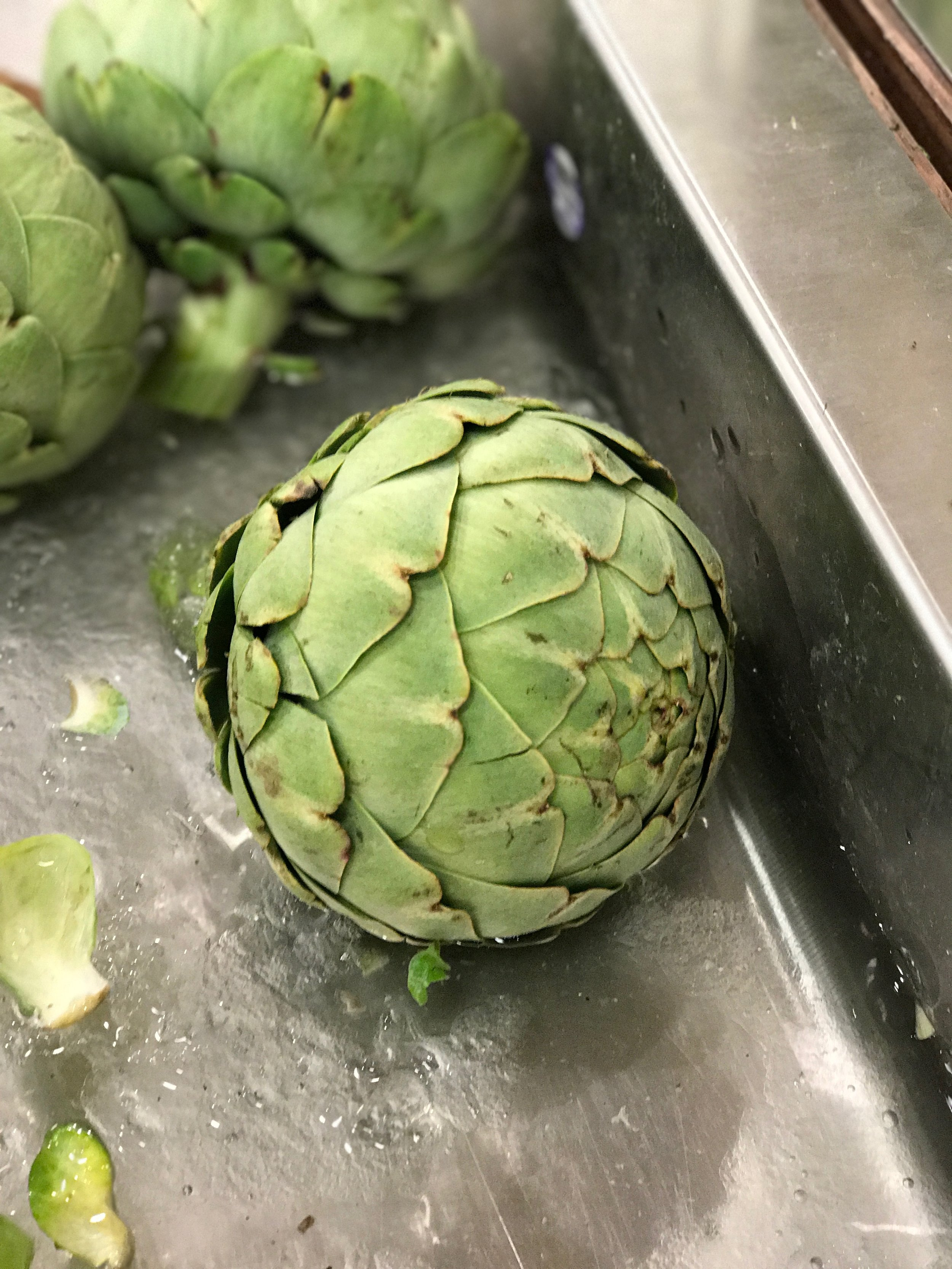 An artichoke at my local grocery store