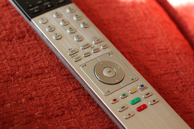 remote control lion loewe assist tv dvd recorder  by  Funki50