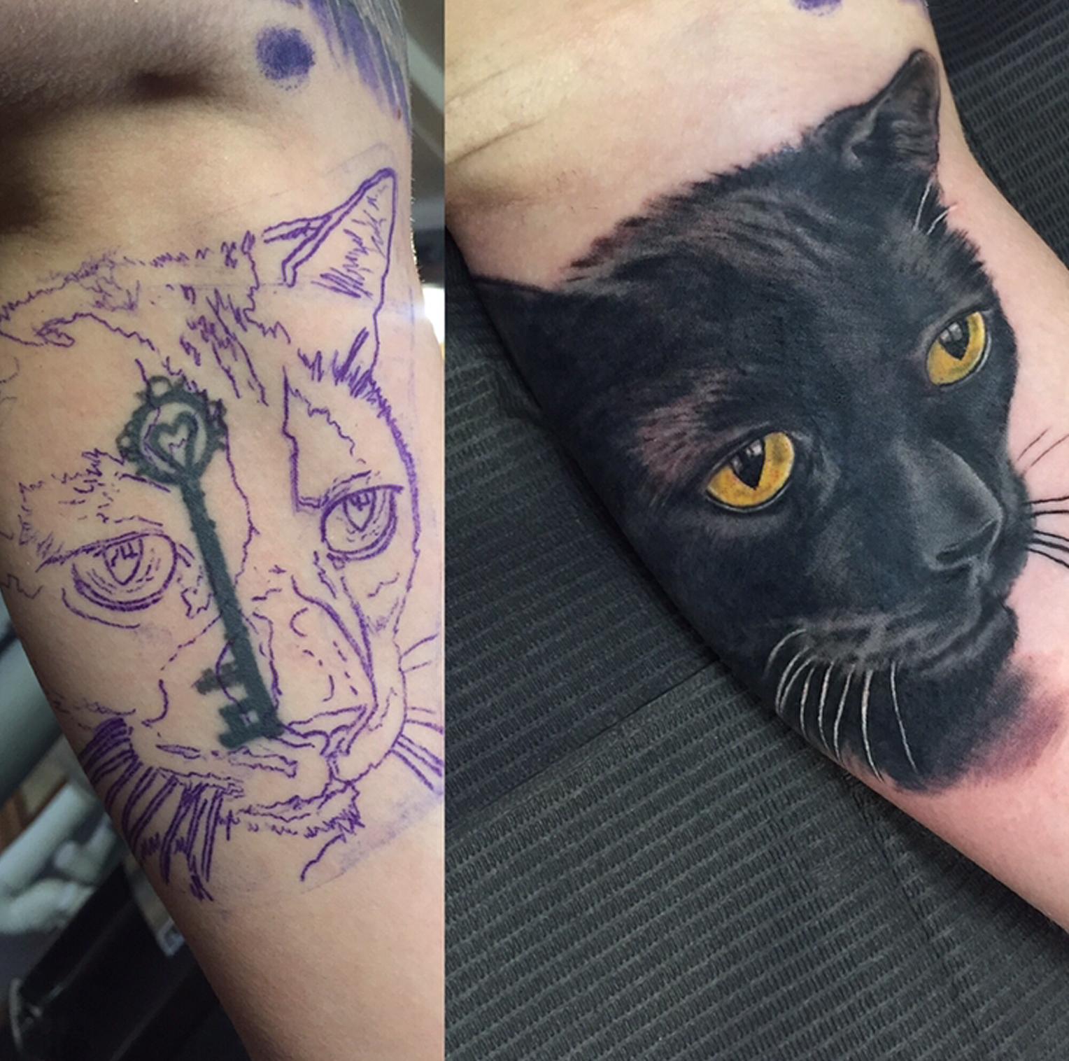 kittycoverup.jpg
