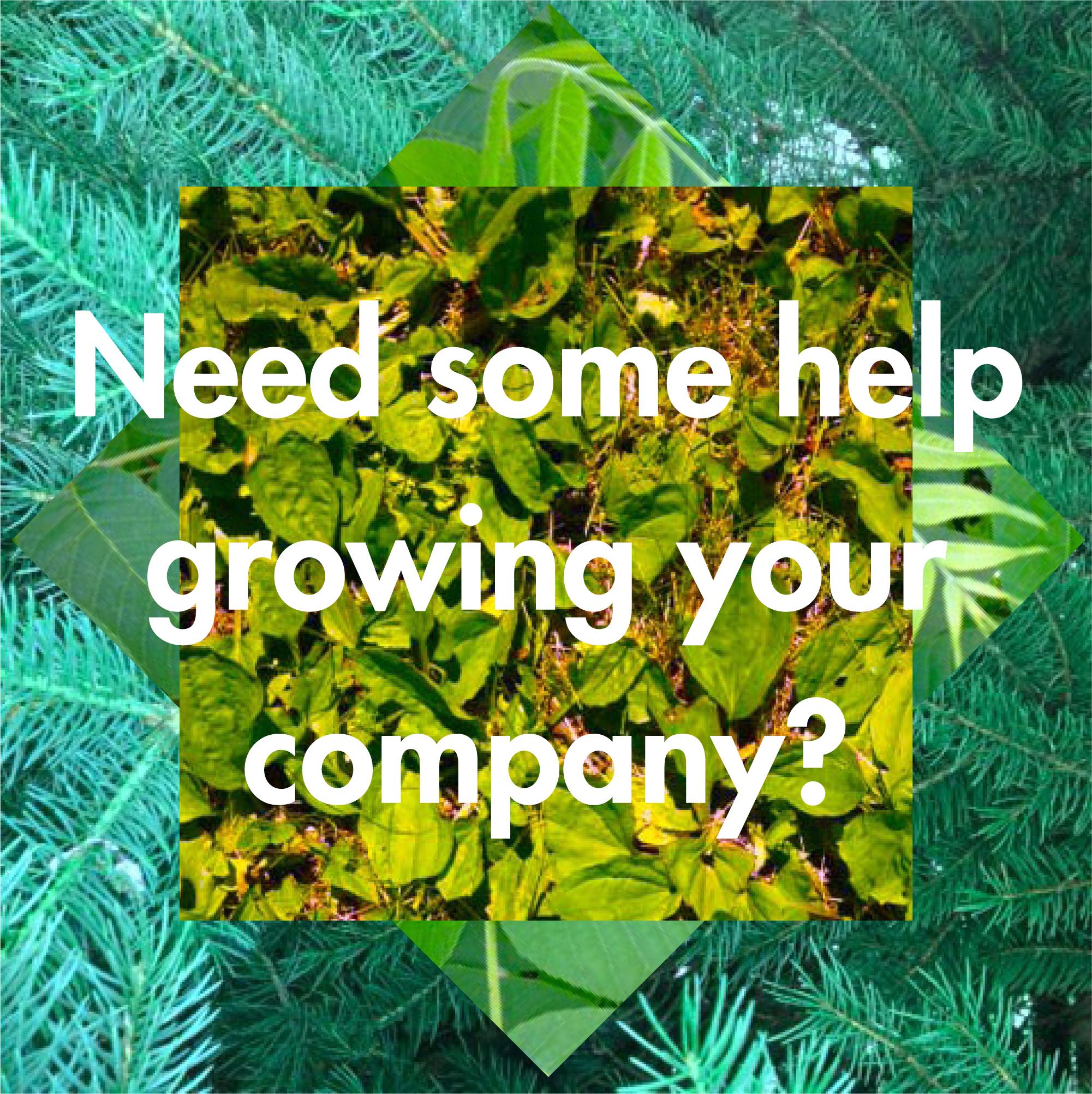 growyourcompany