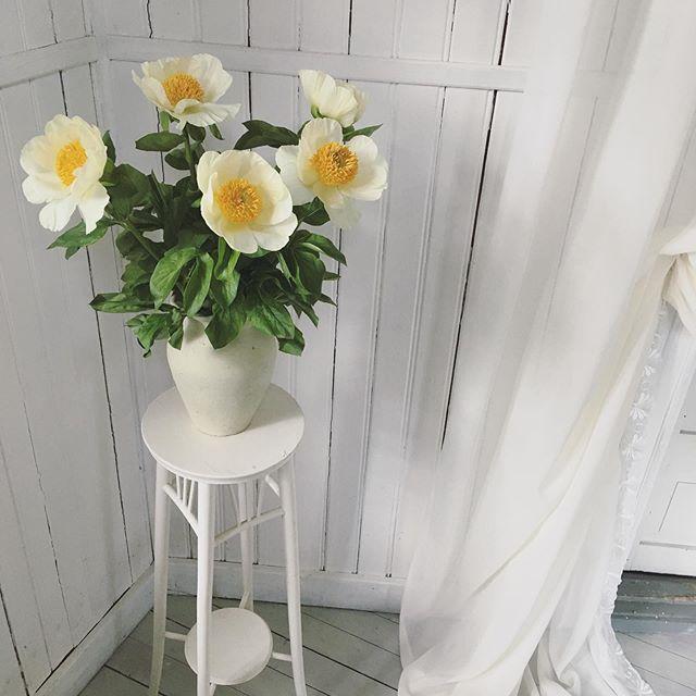 Piontider! 😍 Frossar i dessa magiska blommor just nu! Idag ska jag hålla workshop på event med @cookiesandsweetsbysimona det ska bli skoj! Häng med på storys vet jag!