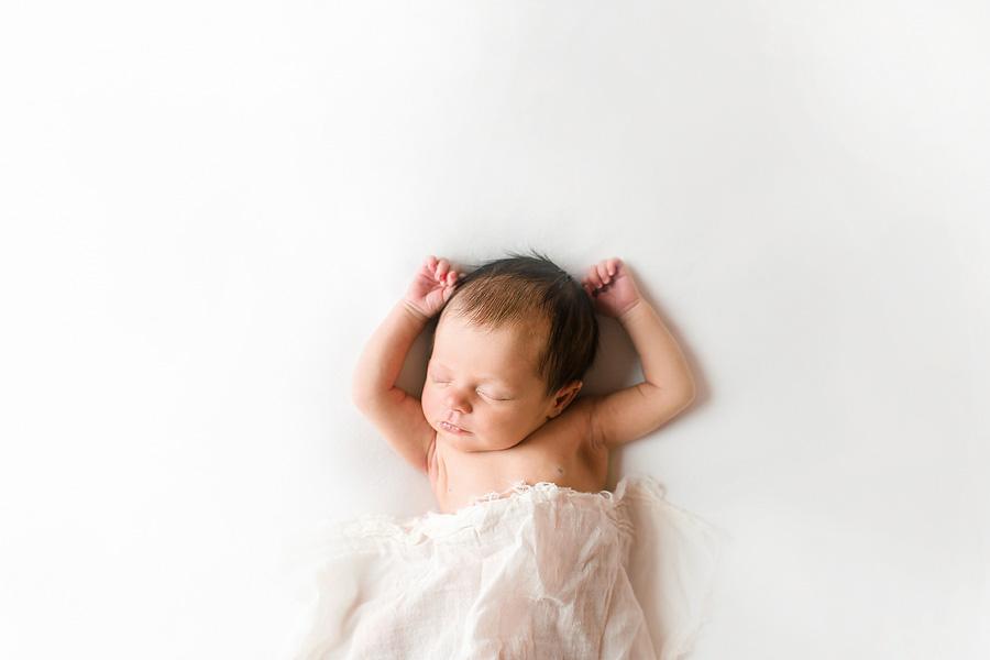 charlotte newborn photographer