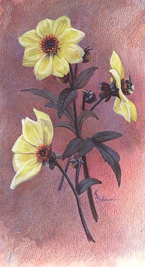 Dahlias and bee