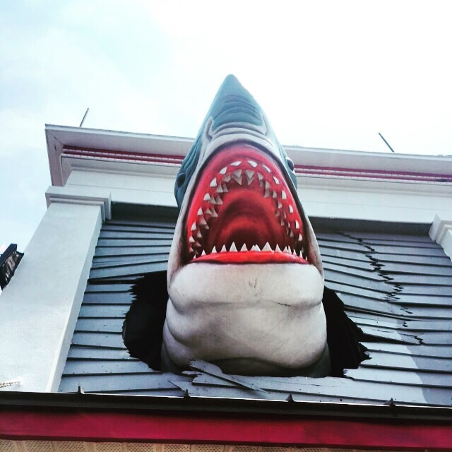 Above Ripley's Believe it or not. Glorious! Love sharks!