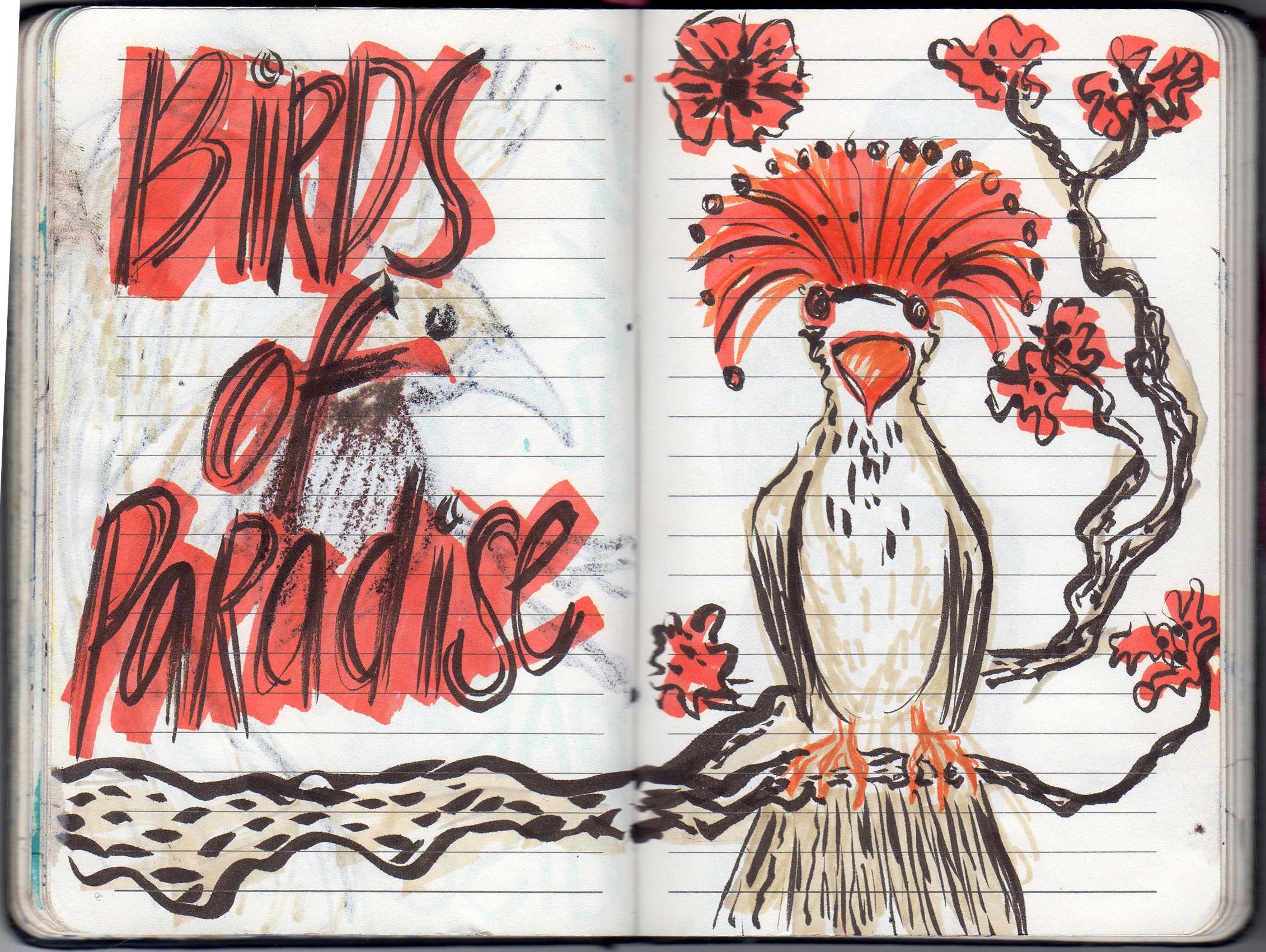 birdparadise2.jpg