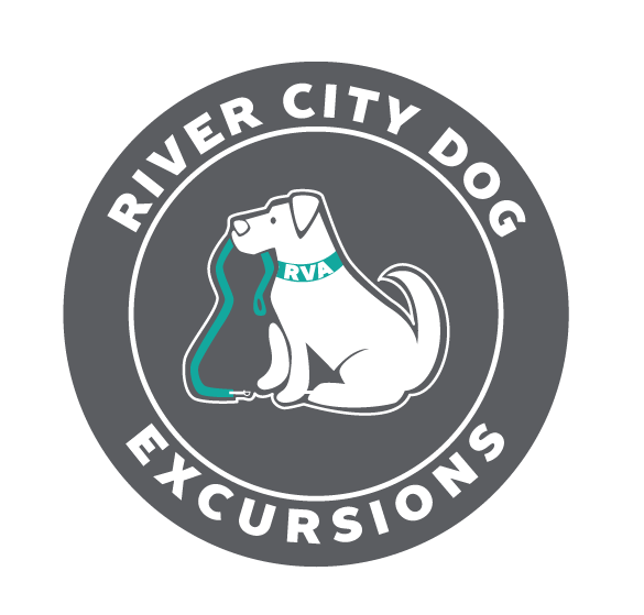 RiverCityX_Final_GRAYRVA.png