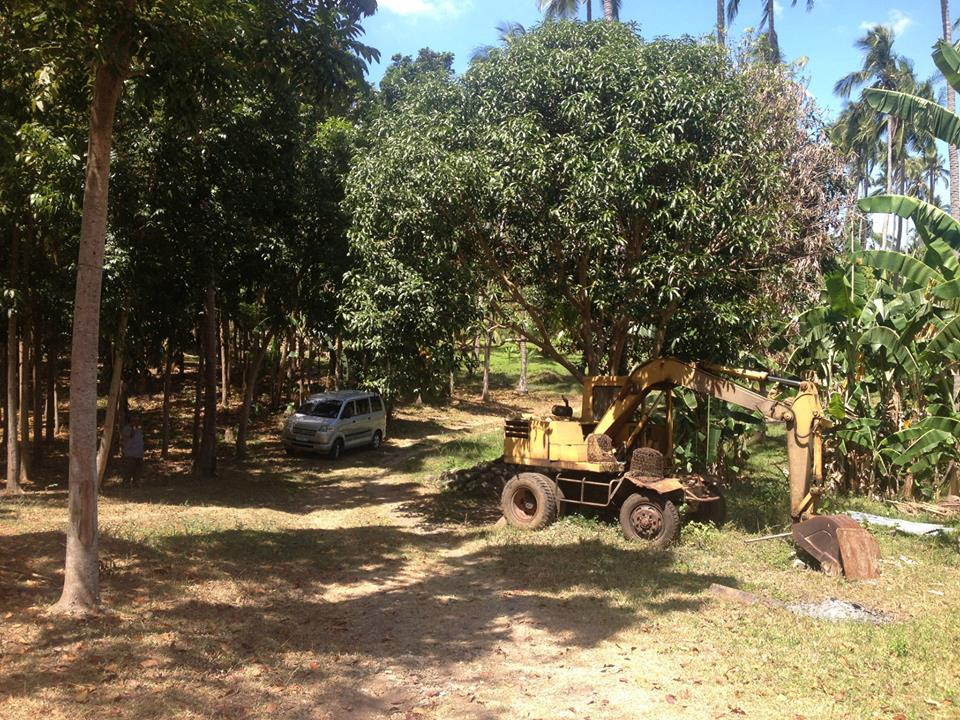 The Land at Tiaong 1.jpg
