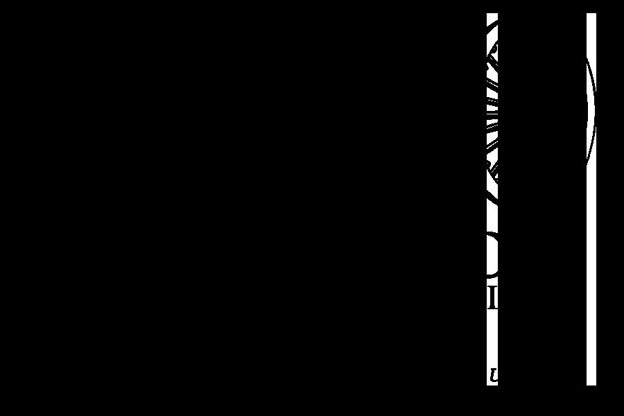 Vipassana Meditation Philippines Logo.png