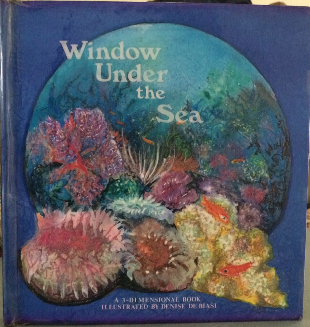 window under the sea.jpg
