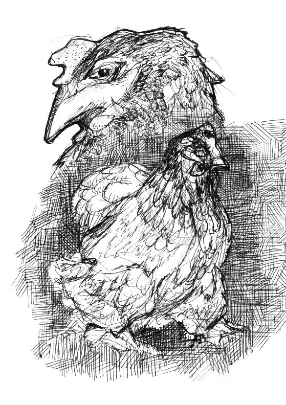 "© 2014   Ava Decapri  ,  ""Chicken Study"""