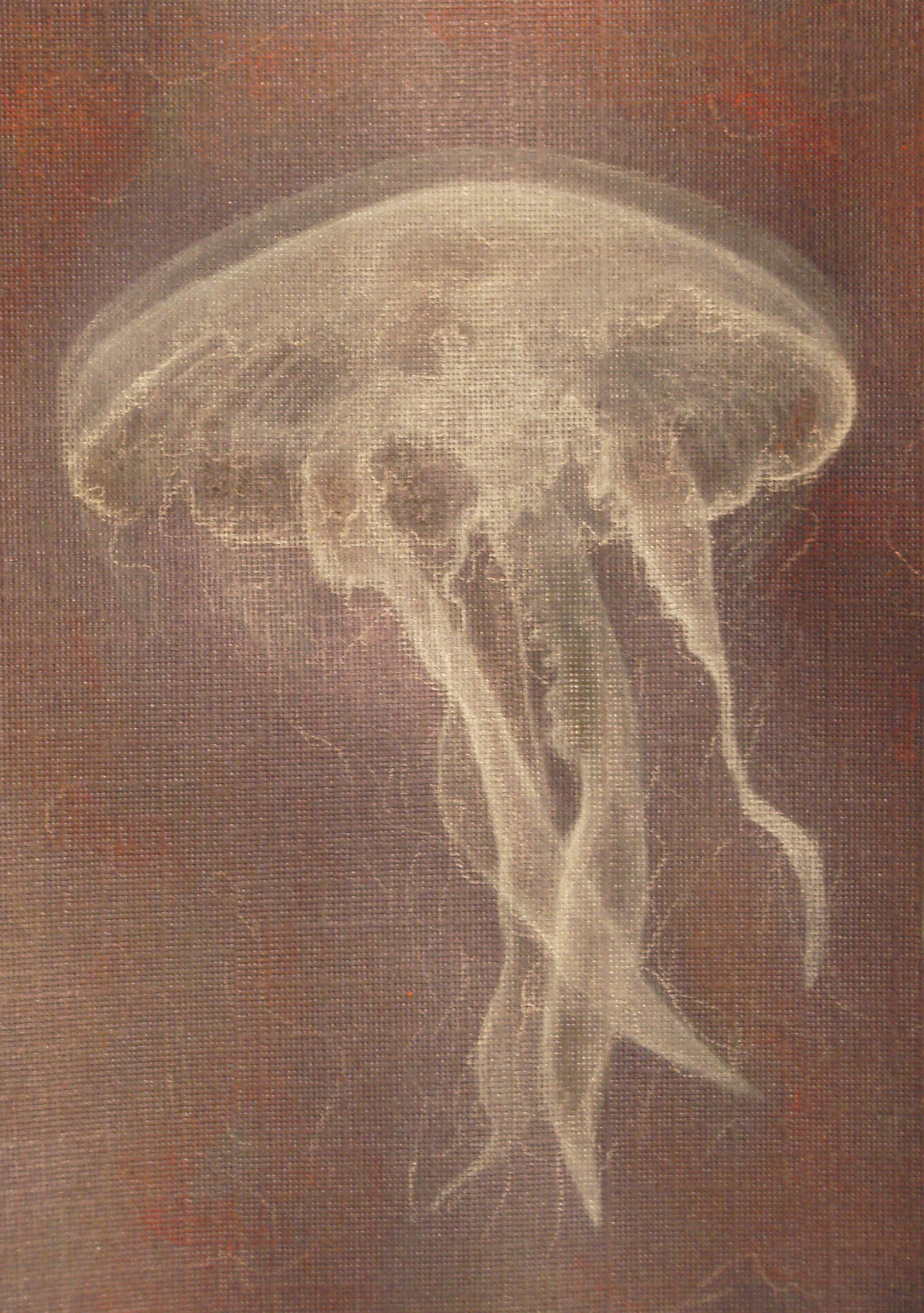 "© 2014   Jennifer Rowe  ,  ""Jellyfish"""