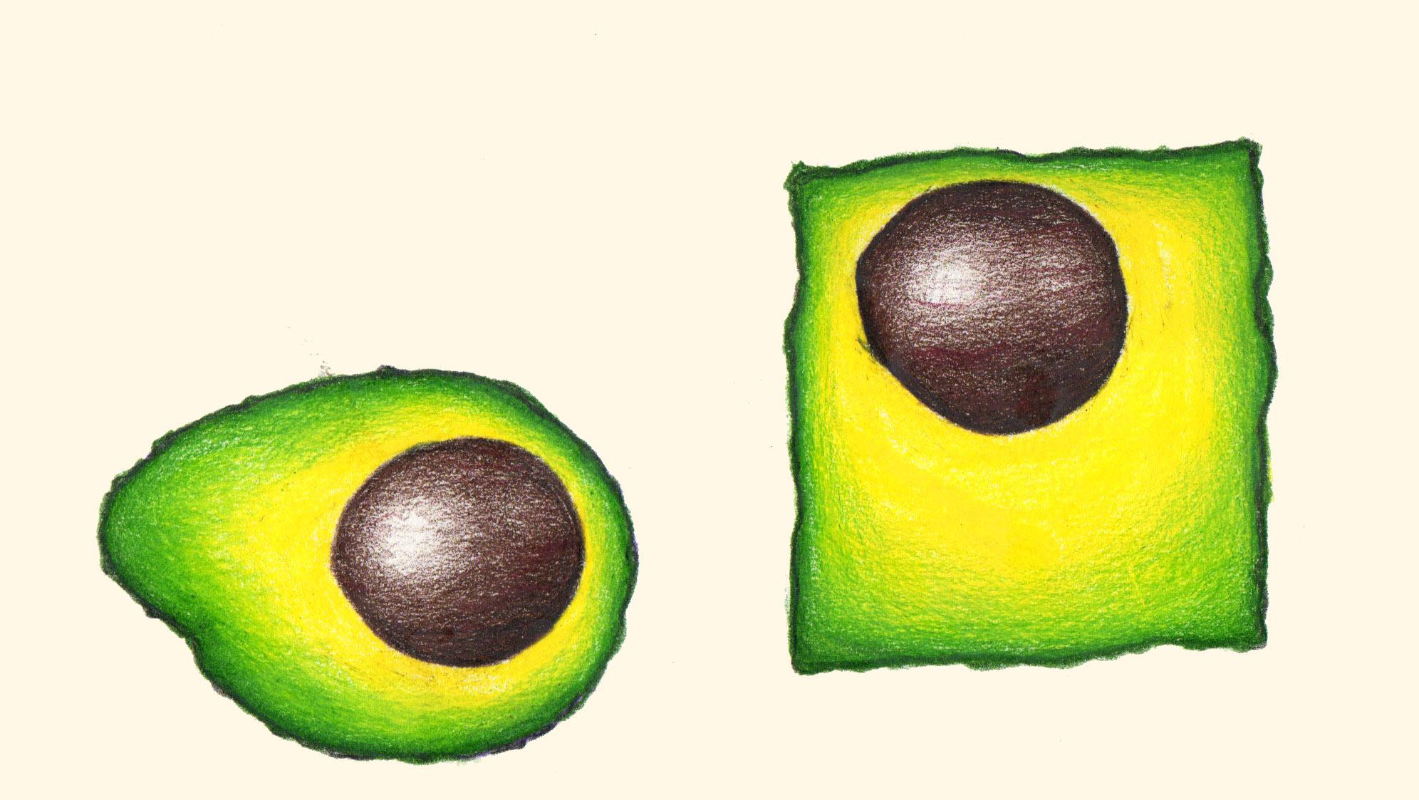 """© 2014  Katrina Santos ,  """"Avocado Study"""""""