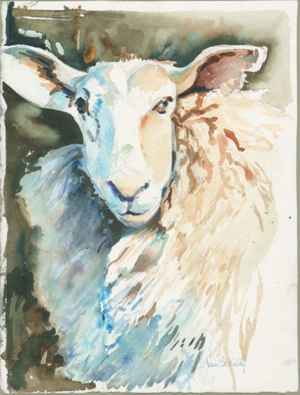 "2014 ©   Ann Kelly  ,  ""Sheep Study"""
