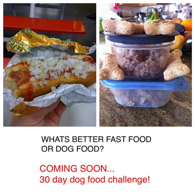 Fast food or Dog food??? 30 day challenge coming soon! Watch Movie Trailer  https://www.indiegogo.com/project/preview/75c6e22d#/ #MyChoiceProject #healthy #success #fun #dogfood vs #fastfood #ketodiet #challenge #30 #TheChoiceProject #Movie #Trailer #help #donate #crowdfunding #campaign