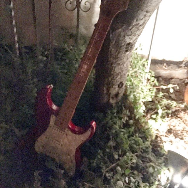 Backyard #strat at a particularly syrupy #sparrowsgate show. #sleepytodd