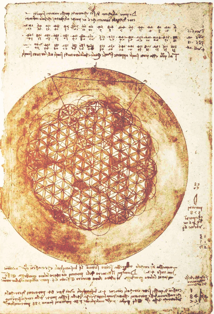 Leonardo_da_Vinci_–_Codex_Atlanticus_folio_307v.jpg