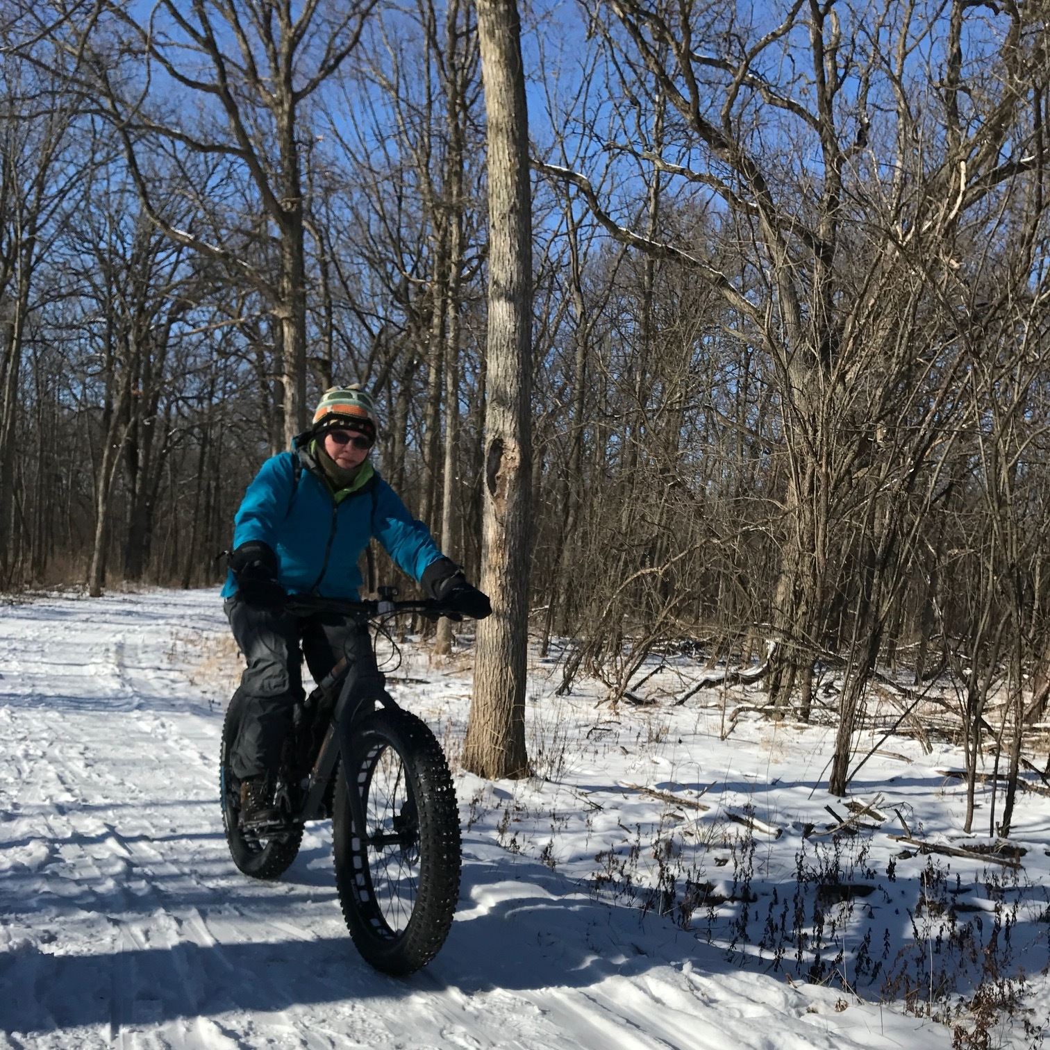 Des Plaines River Trail at Beck Lake, January 1, 2018