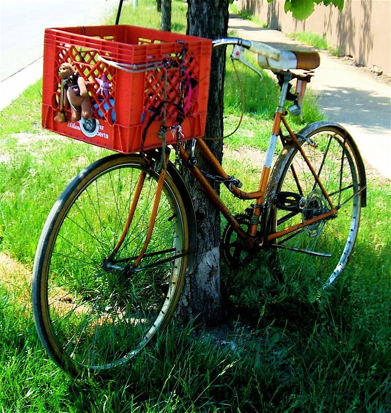 3-speed bike chicago.jpg