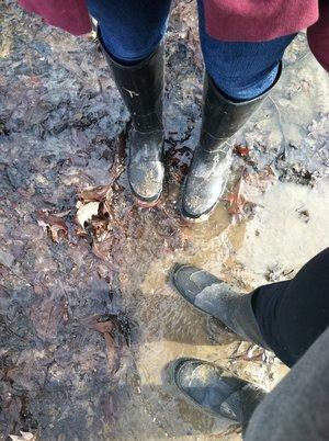 Spring mud.JPG
