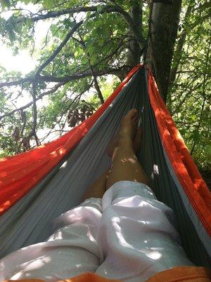 Summer hammock.JPG