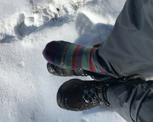Darn Tough Merino Wool socks paired with waterproof boots