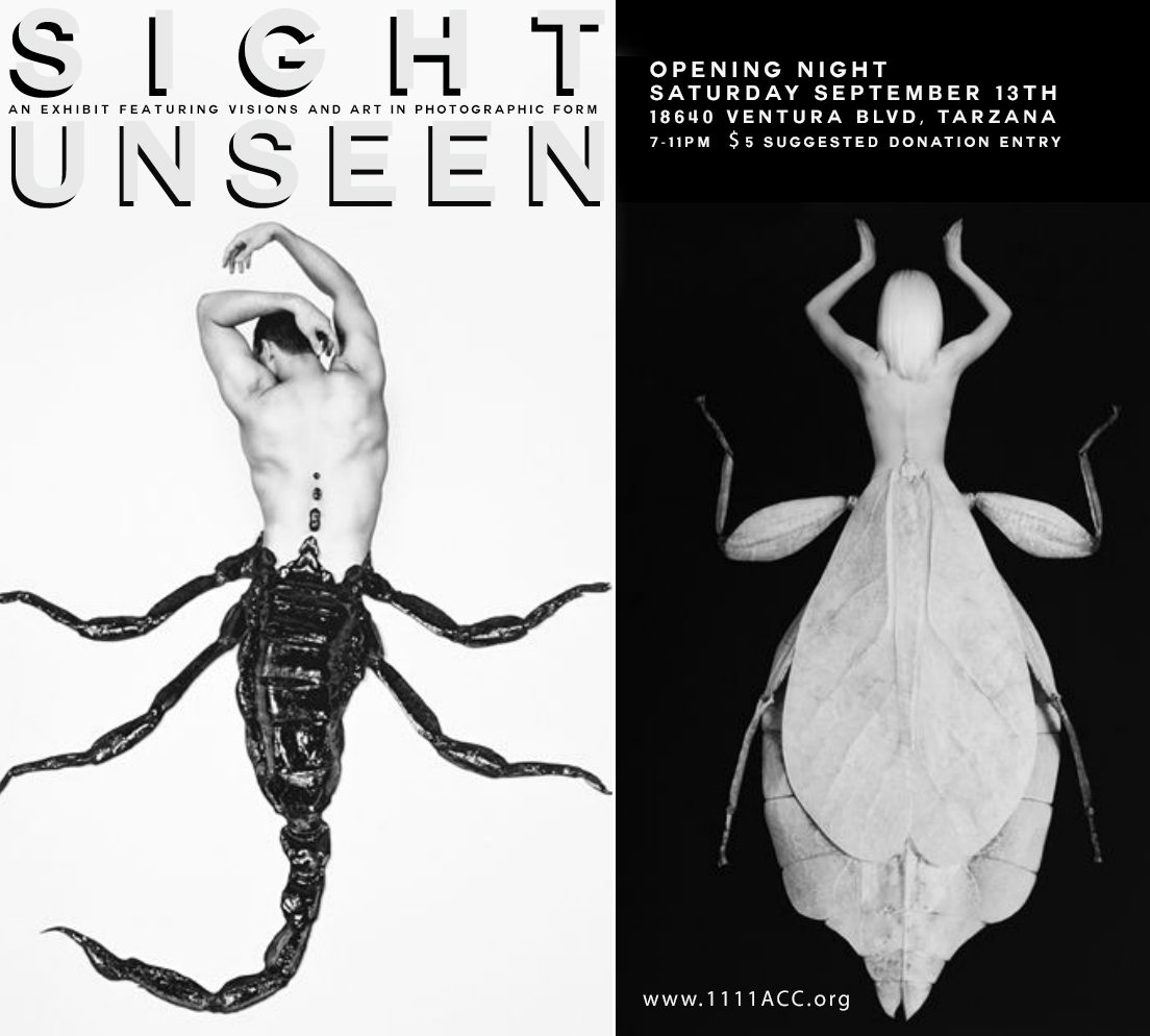 Sight unseen 11:11 gallery