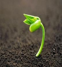 crescitapersonale2_elenatrucco.jpg