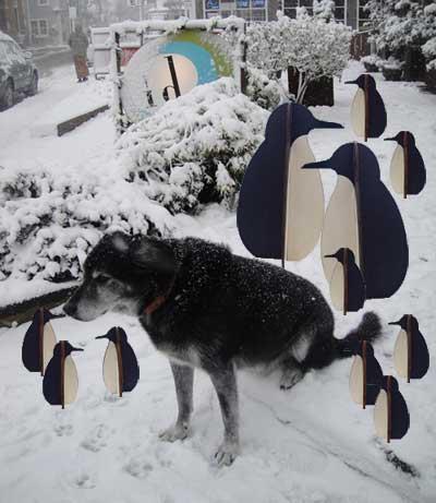 With penguins Nov 2011