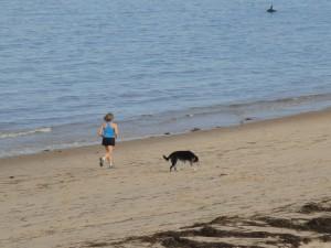Running on the beach Aug 2010.jpg