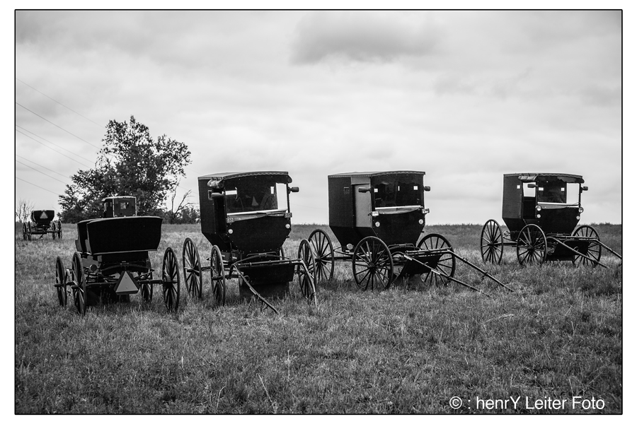 Traditional Amish Buggies parked on the hill. | © : henrY Leiter Foto