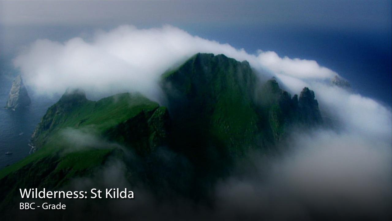 Wilderness St Kilda.jpg