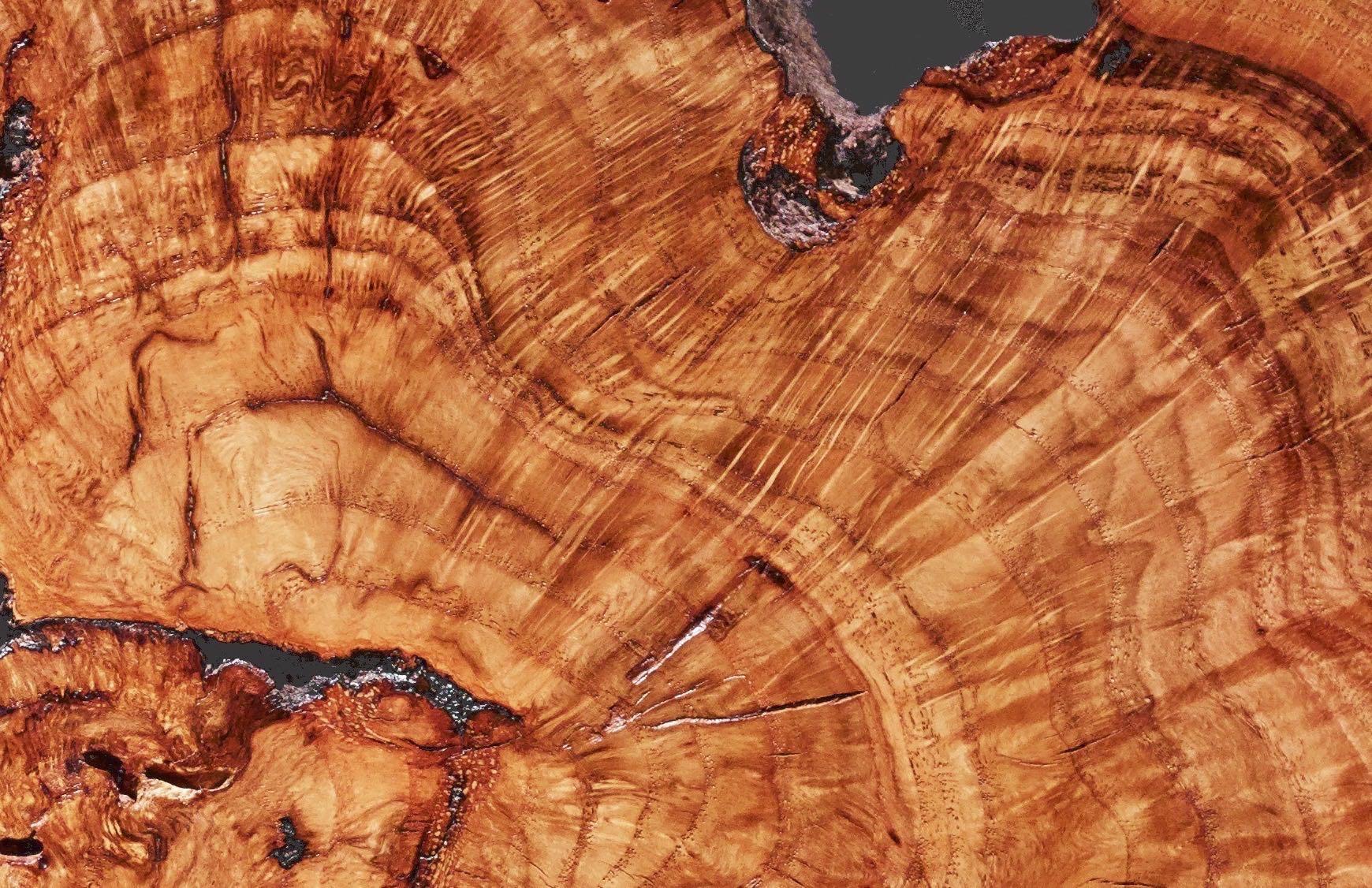 lava 19557 - 4.jpg