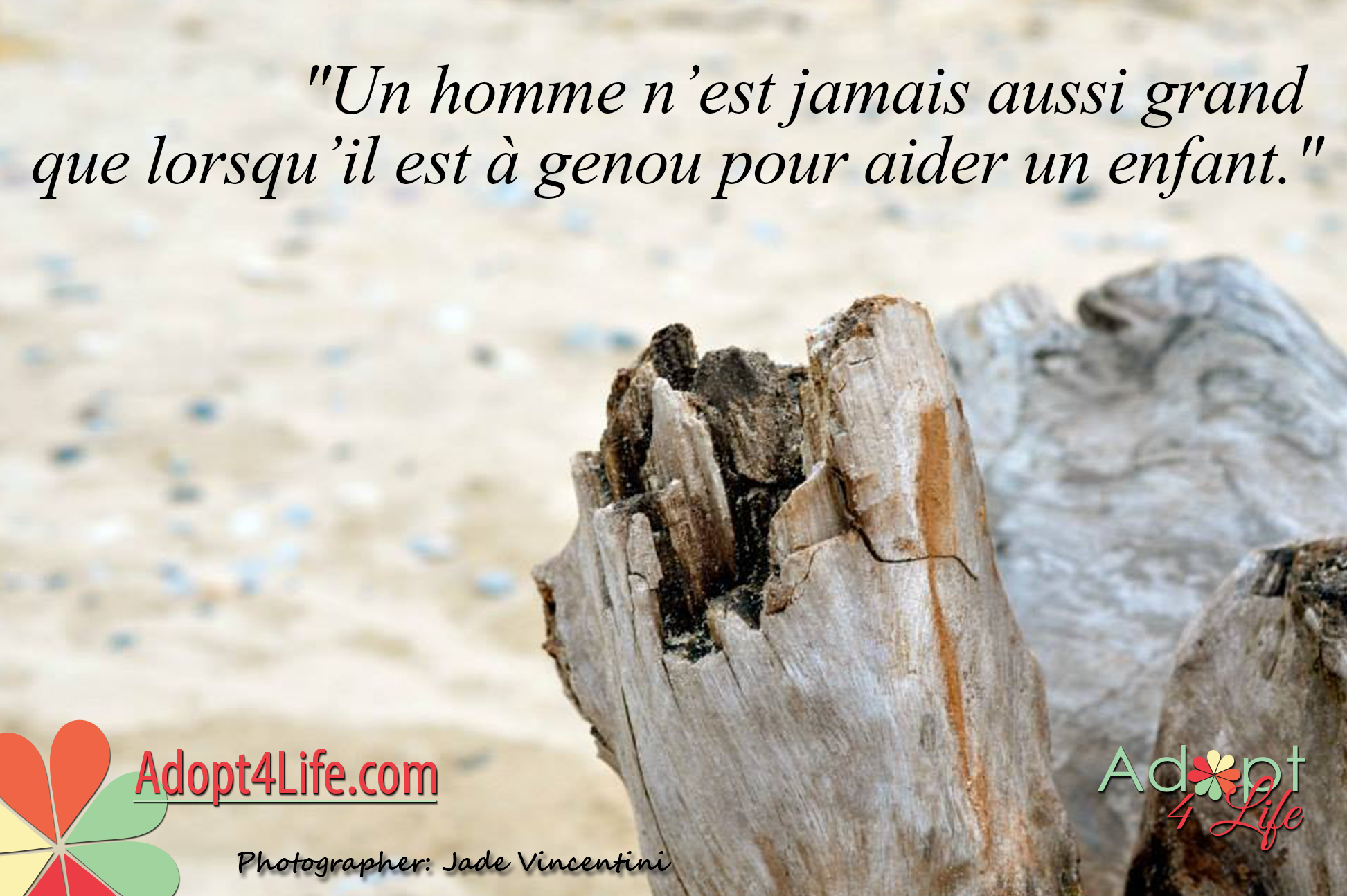 Facebook_AdoptionQuote_French_015_Dec2014_png.png