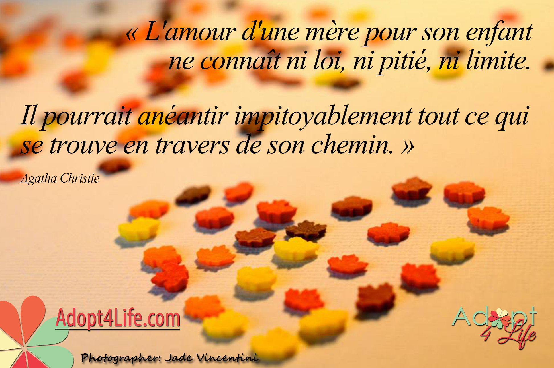 Facebook_AdoptionQuote_French_016_Dec2014_png.png