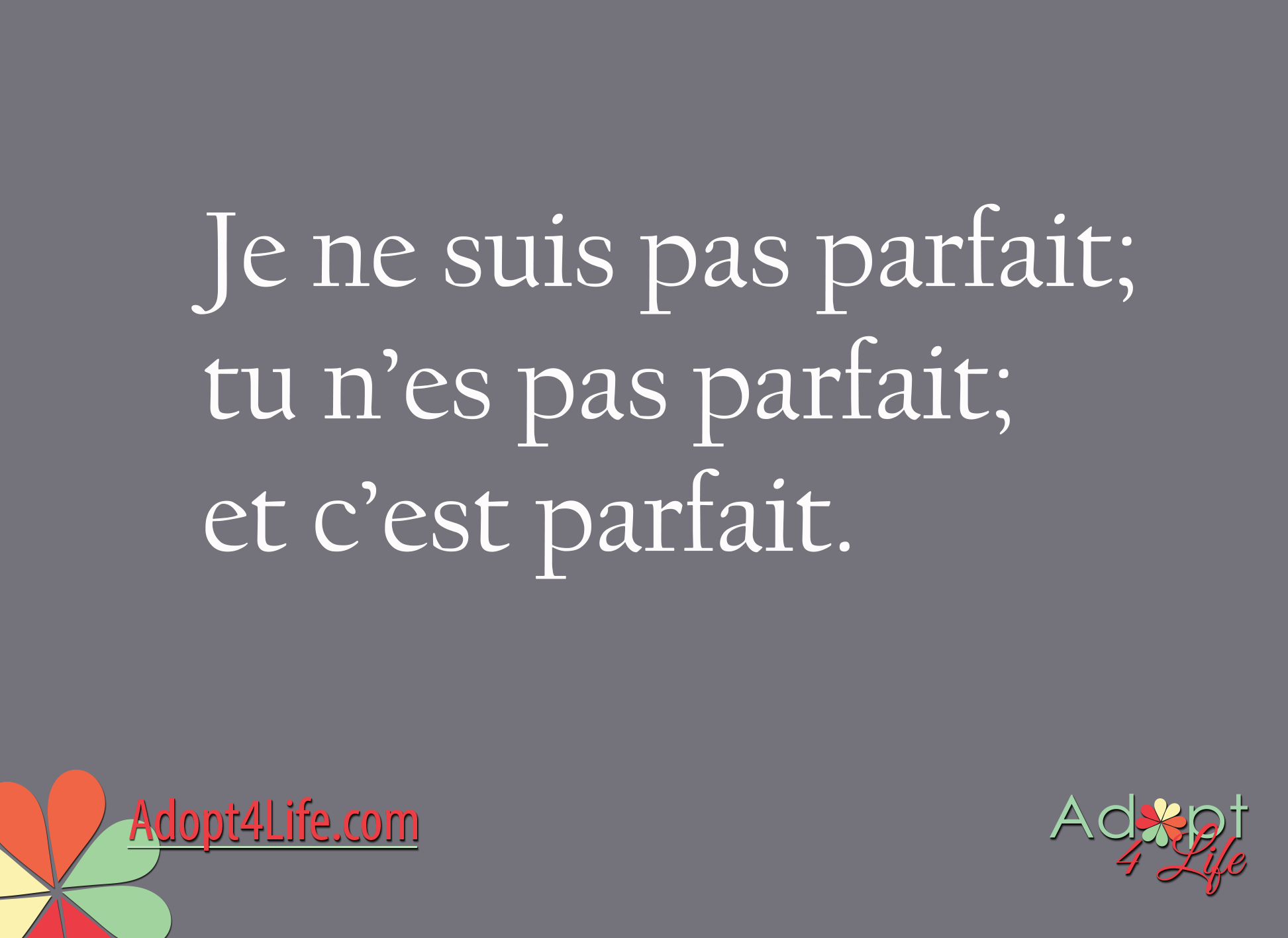 Facebook_AdoptionQuote_French_021_Dec2014_png.png